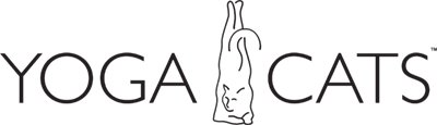 yoga_cats&dogs